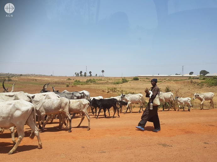 Cattle herders on the road between Jos and Kaduna