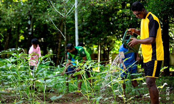 Horticultura: Cuidar de la creación de Dios.