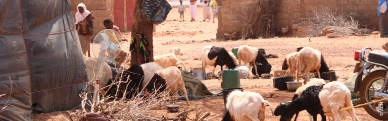 NIGER: Jihadist attack on Christians in Tillaberi